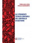 Gli strumenti tecnico-contabili del controllo di gestione